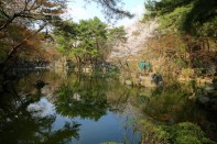 Pond, Kyunghee University