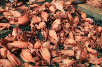 Dried squid Korea, Hyangiram Hermitage near Yeosu