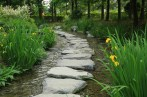 Water stream walkway Semiwon garden Korea