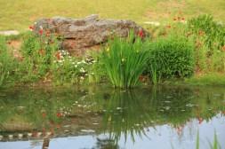 Beautiful garden Korea