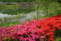 Sound fountain West Seoul Lake Park 서서울 호수공원
