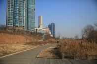 Biking around Yeouido