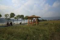 Guri Citizen's Hangang River Park
