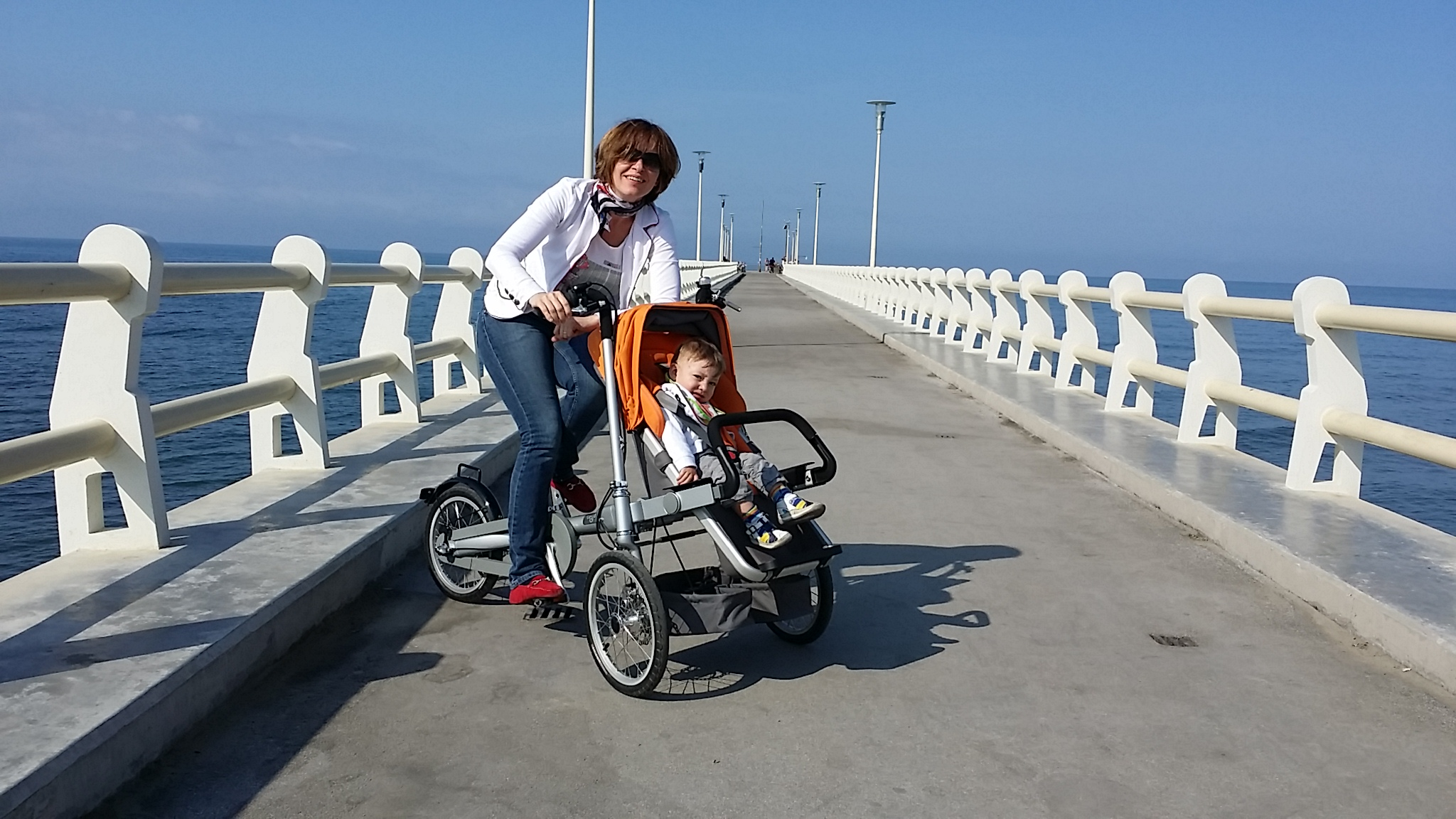 TAGA BIKE:STROLLER AND CHILD CARRIER BIKE