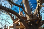 treehouse04_wide_320
