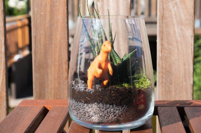 diy dinosaurus terrarium   Babies Kitchen DIY