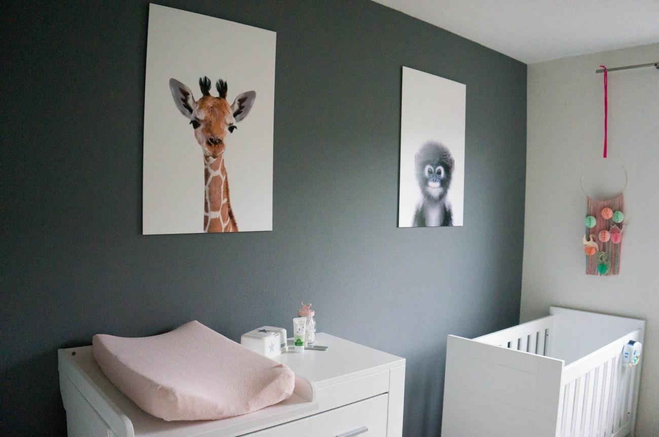 Jungle Babykamer | Babies Kitchen