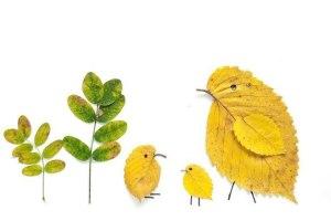 ptichki-1