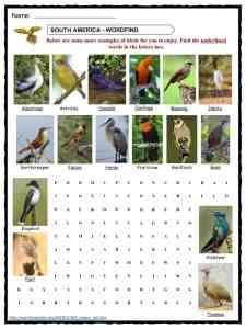Bird Facts, Worksheets, Habitat, Diet & Information For Kids