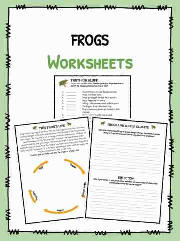 Frogs Worksheets