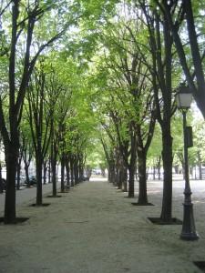 Paris-Summer