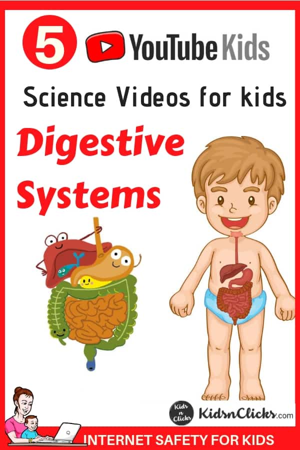 5 Science Youtube videos that teaches kids about digestive ...
