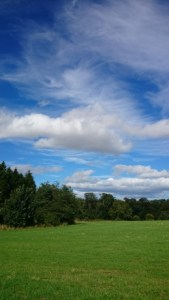 Image of green field with trees and blue sky and white clouds