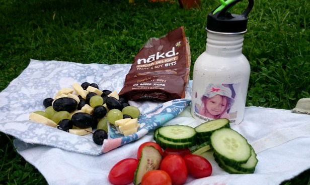 Eco sandwich wraps with veggies, cheese and grapes, water bottle and chocoate snacks on grass