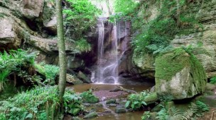 Image of Routin Lynn Waterfall showing rocks and vegetation