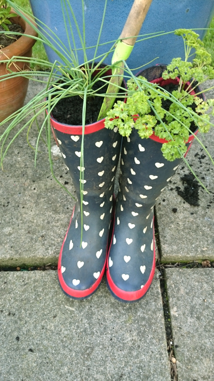 full-length-pair-of-wellies-with-herbs-growing-inside