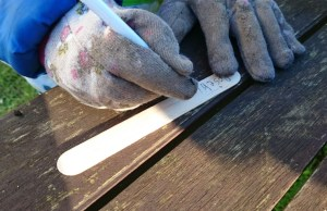 Image close-up-of-hands-in-gardening-gloves-writing-seed-label