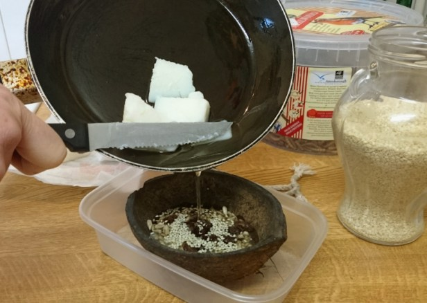 image of melted-lard-being-poured-from-pan-into-half-coconut-feeder-with-seeds-in