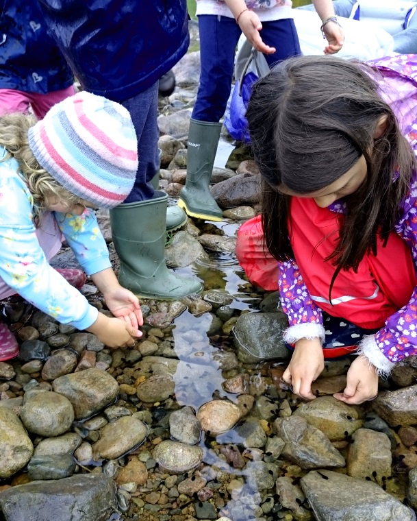 Image of children catching tadpoles amongst rocks in a stream