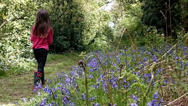 Image of girl walking on path through bluebell wood