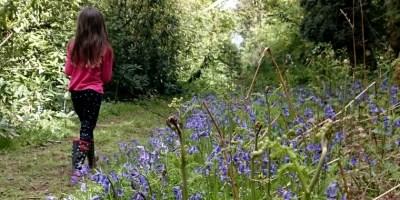 Image of girl walking on path through bluebell wood