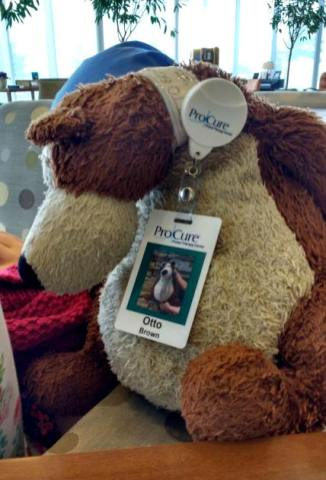 Image of teddy bear wearing ProCure ID badge