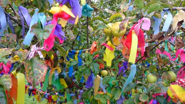 Image of multicoloured ribbons hanging in apple tree