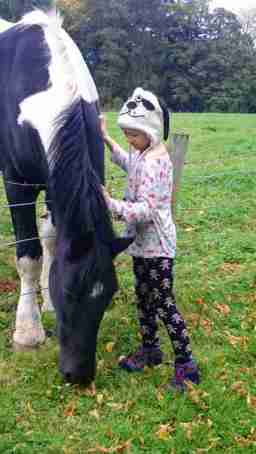 Image of girl in woolly dog hat with lilac jumper and dark leggings stroking black and white horse leaning over fence eating grass