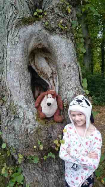 Image of girl in woolly hat standing by ancient tree with teddy sat in a large hollow knot in tree trunk