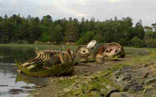 Image of two wooden shipwrecks on river beach with woods behind near Benodet, France