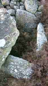 Image of ancient stones forming rectangle of burial cist in mossy ground with stones behind