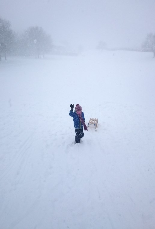 Image of distant child waving to camera in blizzard white out with faint tree shapes in background