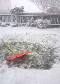 Image of red snow shovel on ground in cleared patch of grass among deep snow
