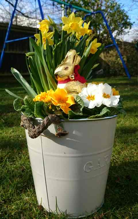 Image of cream bucket standing on grass with yellow daffodils and primroses growing in