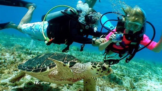 Image of adult and child underwater in scuba gear with a turtle in foreground