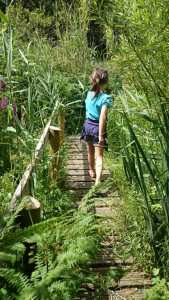 Image of girl in blue shorts and T-shirt crossing wooden bridge amongst a jungle of foliage