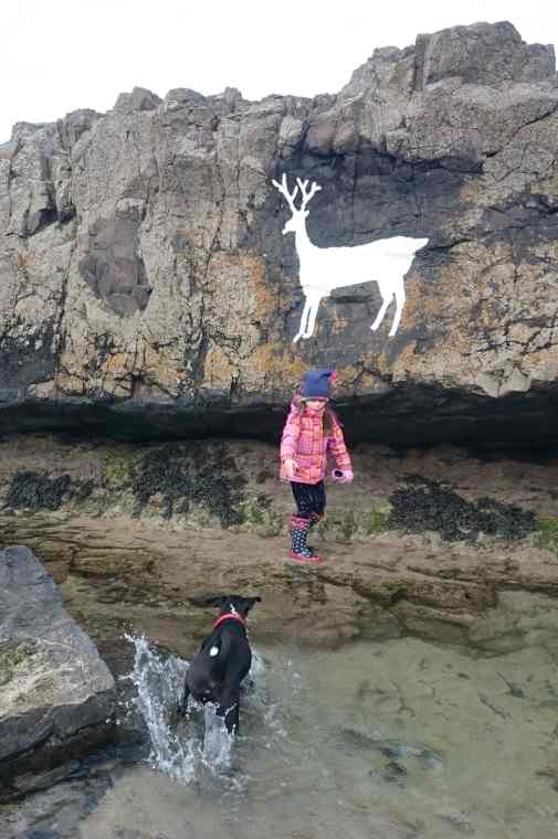Image of white stag painted on rocks above rock pool with black dog splashing and child in orange top at edge