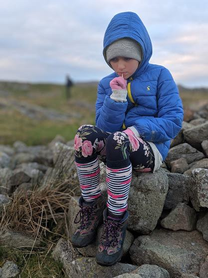 Image of girl in blue coat and outdoor clothes sitting on dry stone wall chewing a stick