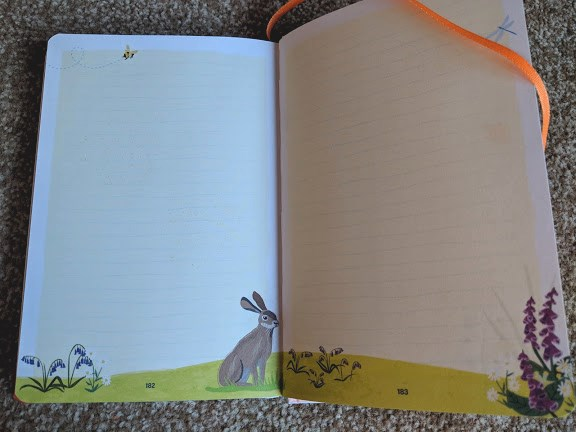 Image of double page spread of picture book showing blank pages for writing own notes