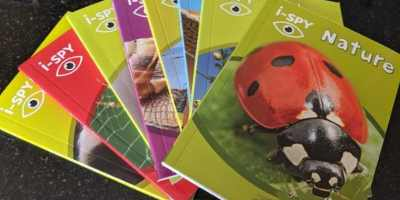 Image of 8 coloured childrens i-spy books in a fan with top book showing large photo of red and black ladybird