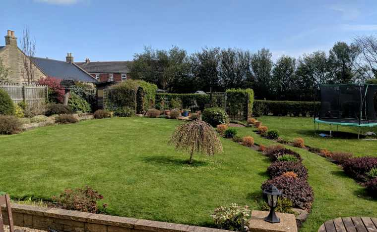 Image of large garden with lawn, bushes, trellis, patio and pots with trees and sky behind
