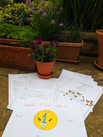 Image of pieces of white paper on ground in front of pots of purple flowers and herbs