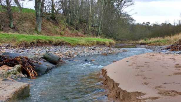 Image of river running onto sandy beach with woods behind