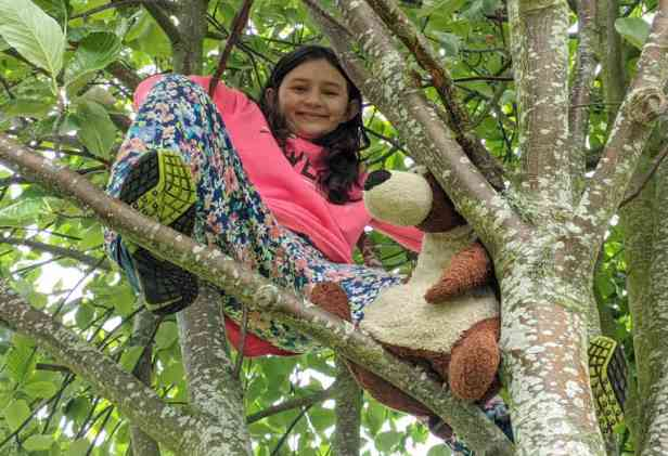 Girl and teddy bear on branch in tree
