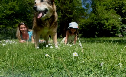 Woman and girl and brown dog sitting on grass