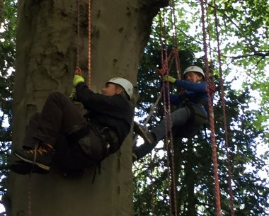 man-and-woman-climbing-tree-in-harnesses