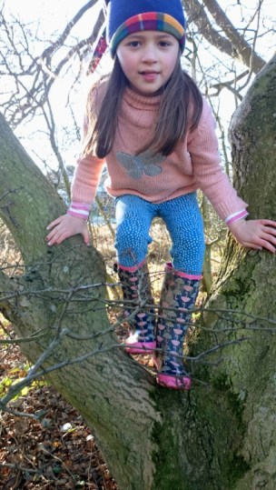 girl-in-pink-jumper-blue-leggings-and-woolly-hat-climbing-a-tree