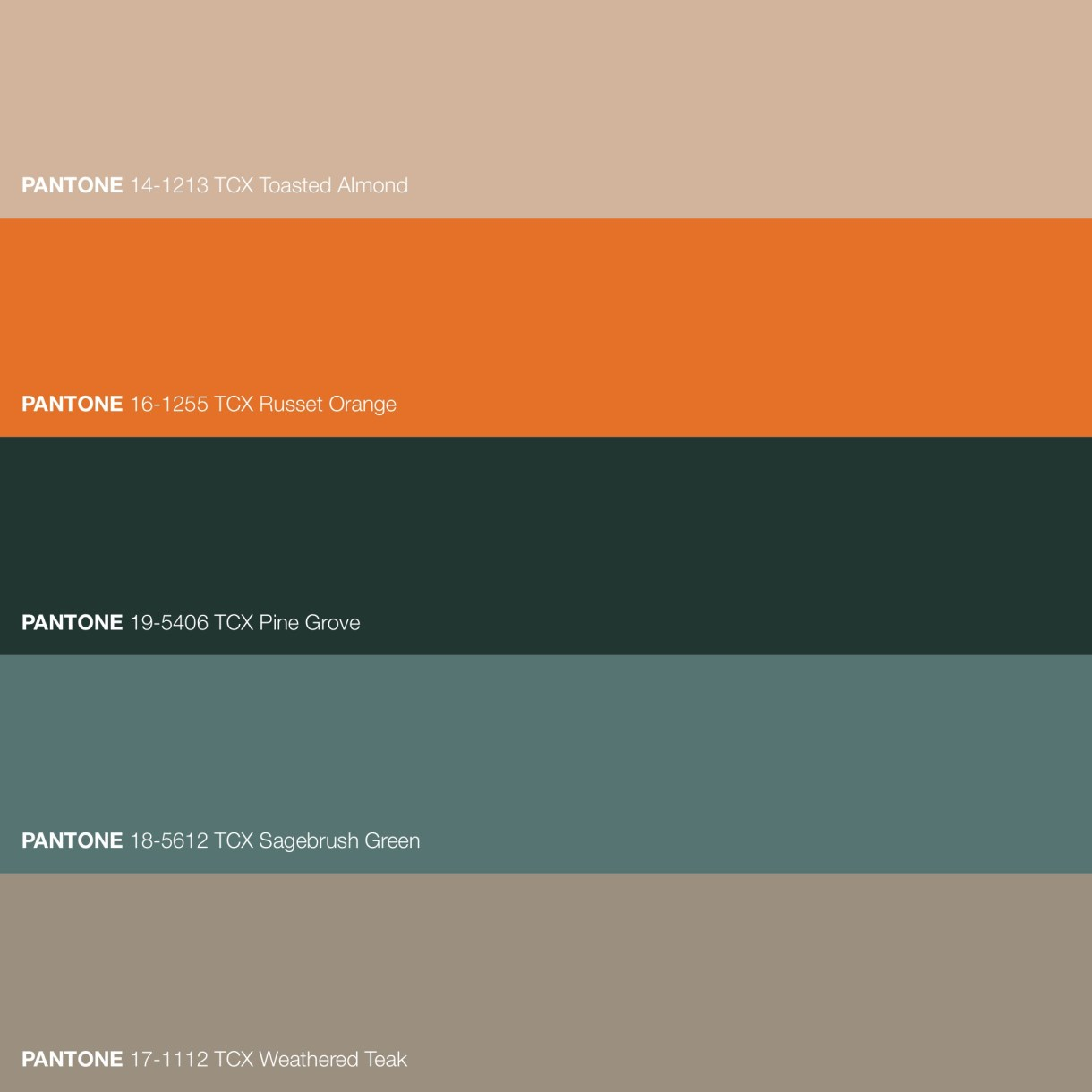 Accented Green Color Palette