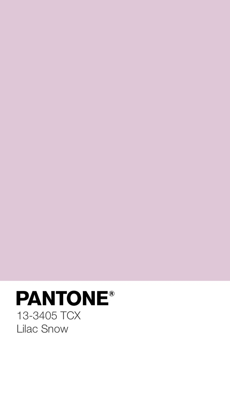 Silky Sheerness Color Palette 7