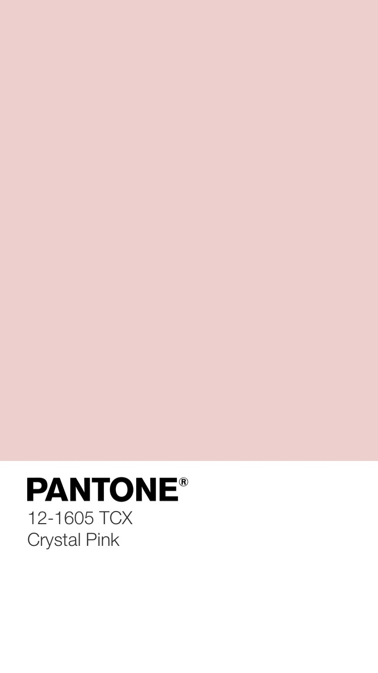 Silky Sheerness Color Palette 8